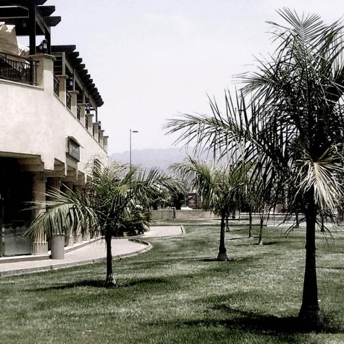 villa_del_conde_destacada
